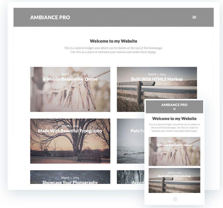 Ambiance Pro plantilla fotografía WordPress