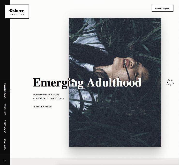 Fisheye Gallery web de fotografía WordPress