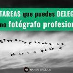 13 tareas que puedes delegar como fotógrafo profesional