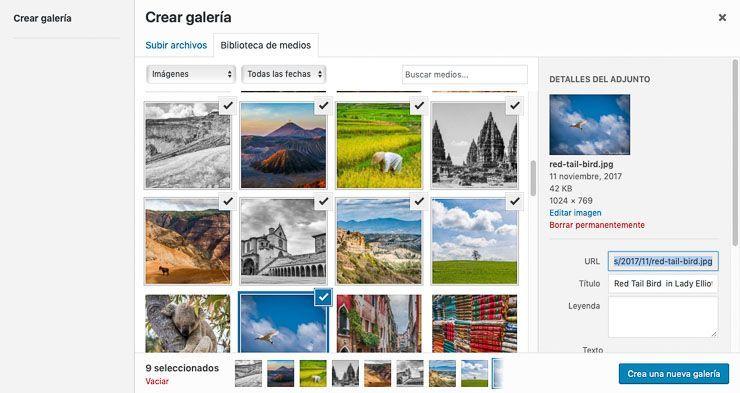 Crear galeria bloque WordPress